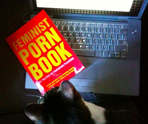 feministpornbook